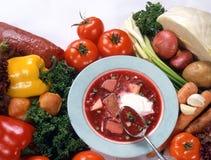 Ukrainian vegetable soup. Bowl of borscht, traditional Ukrainian vegetable soup, with raw vegetables around Stock Photos