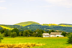 Ukrainian village in Carpathians Stock Image