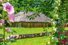 Ukrainian village landscape and fence with flowers mallows. This house part of the Museum of Folk Architecture and Life of the average Naddnepryanschiny in Royalty Free Stock Image