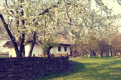 Ukrainian village in the spring Stock Photography