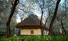 Ukrainian village in the spring Royalty Free Stock Photo