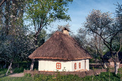 Ukrainian village in the spring Royalty Free Stock Images