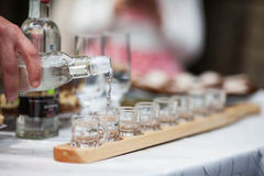 Ukrainian vodka. Alcohol on steep buffet table stock photography