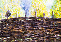 Ukrainian wattled fence Stock Image