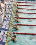 Ukrainian winter swimming championship Royalty Free Stock Photography