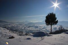 Ukrainien Carpathiens pendant l'hiver image stock