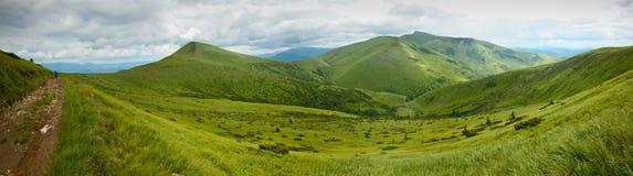Ukrainische Berge Stockbilder