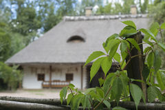 Ukrainische Hütte Lizenzfreies Stockfoto