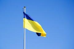 Ukrainsk flagga Arkivfoton