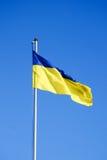 Ukrainsk flagga Fotografering för Bildbyråer