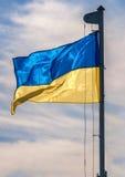 Ukrainsk flagga Arkivbilder