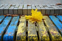 Ukrainsk höst Royaltyfri Foto