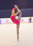 Ukrainsk mästerskap 2014 för rytmisk gymnastik royaltyfri foto