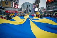 Ukrainsk protest Arkivfoton