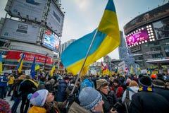 Ukrainsk protest Arkivfoto
