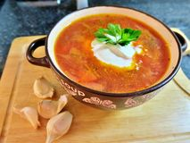 Ukrainsk röd borscht med gräddfil, persilja och vitlök fotografering för bildbyråer