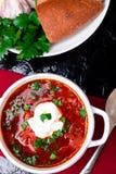 Ukrainsk traditionell borsch Rysk vegetarisk röd soppa i den vita bunken på röd träbakgrund Top beskådar Borscht borshchintellige royaltyfri fotografi