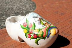 Ukrainska stora skor Royaltyfria Bilder