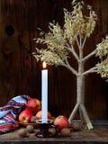 Ukrainskt julbegrepp för hälsningkort Sammansättning av xmas-symboldidukh, brännande stearinljus, äpplen, valnötter på träbackgr Royaltyfria Bilder