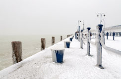 Ukrywa przy Jeziornym Balaton w zima czasie, Węgry Fotografia Royalty Free