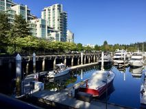 Ukrywa w Burrard wpuscie przy niskim przypływem w Vancouver, Kanada Zdjęcia Stock