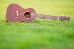 Ukulélé en bois dessus classée de l'herbe verte Photographie stock libre de droits