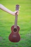 Ukulélé en bois sur l'herbe verte Photo libre de droits