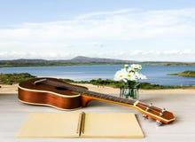Ukulélé et carnet et fleur vides sur le fond de lac Photographie stock libre de droits