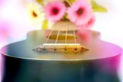 Ukulele με το ζωηρόχρωμο λουλούδι στοκ φωτογραφίες