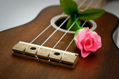 ukulele Immagine Stock