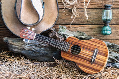 Ukulele with cowboy hat on barn background stock image
