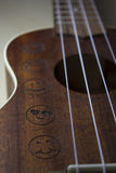 Ukulele. A detail photo of an ukulele Royalty Free Stock Images
