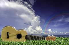 Ukulele on fresh green grass with blue sky and Rainbow. Stock Images