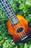 Ukulele gitara przy halną natura lasu trawą Fotografia przedstawia Zdjęcie Royalty Free