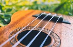 Ukulele gitara przy halną natura lasu trawą Fotografia przedstawia Obraz Stock