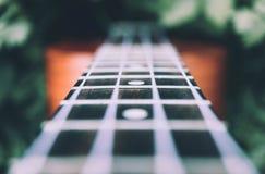 Ukulele gitara przy halną natura lasu trawą Fotografia przedstawia Zdjęcia Royalty Free