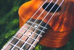 Ukulele gitara przy halną natura lasu trawą Fotografia przedstawia Zdjęcia Stock