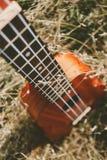 Ukulele gitara przy halnej natury jesieni suchą żółtą trawą P Zdjęcie Stock