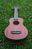 Ukulele in the grassland Stock Photo