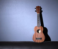 Ukulele on Gray Background Stock Image
