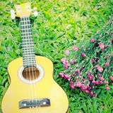 Ukulele guitar on grass with flower Royalty Free Stock Image