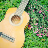 Ukulele guitar on grass with flower Stock Photography