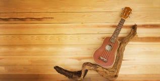ukulele i gałązka w roczniku projektujemy colour z spajającym drewnianym bac Fotografia Stock