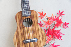 Ukulele in Japan Lizenzfreie Stockbilder
