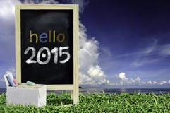 Ukulele mit blauem Himmel und Text der Tafel 2015 auf dem Gras Lizenzfreie Stockbilder