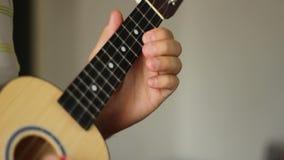 Ukulele Musical Instrument stock video