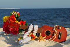 Ukulele na praia Foto de Stock Royalty Free