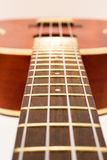 Ukulele neck isolated in perspective showing frets. Ukulele neck isolated in perspective showing neck and frets Stock Photography