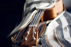 Ukulele with nylon strings on open case stock image