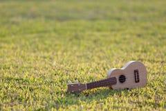 Ukulele på gräs fotografering för bildbyråer